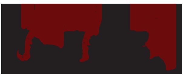 la-societa-dei-carbonari-ciclisti